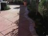 backyard3.jpg